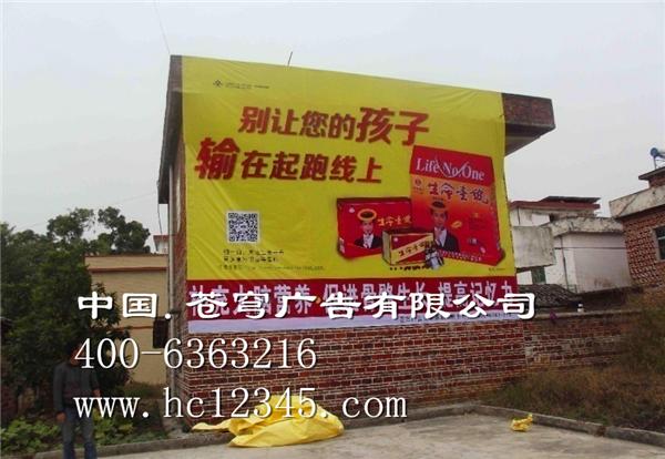 柳州路墙广告—生命一号
